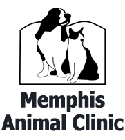 Best Vet and Best Pet Boarding in Memphis