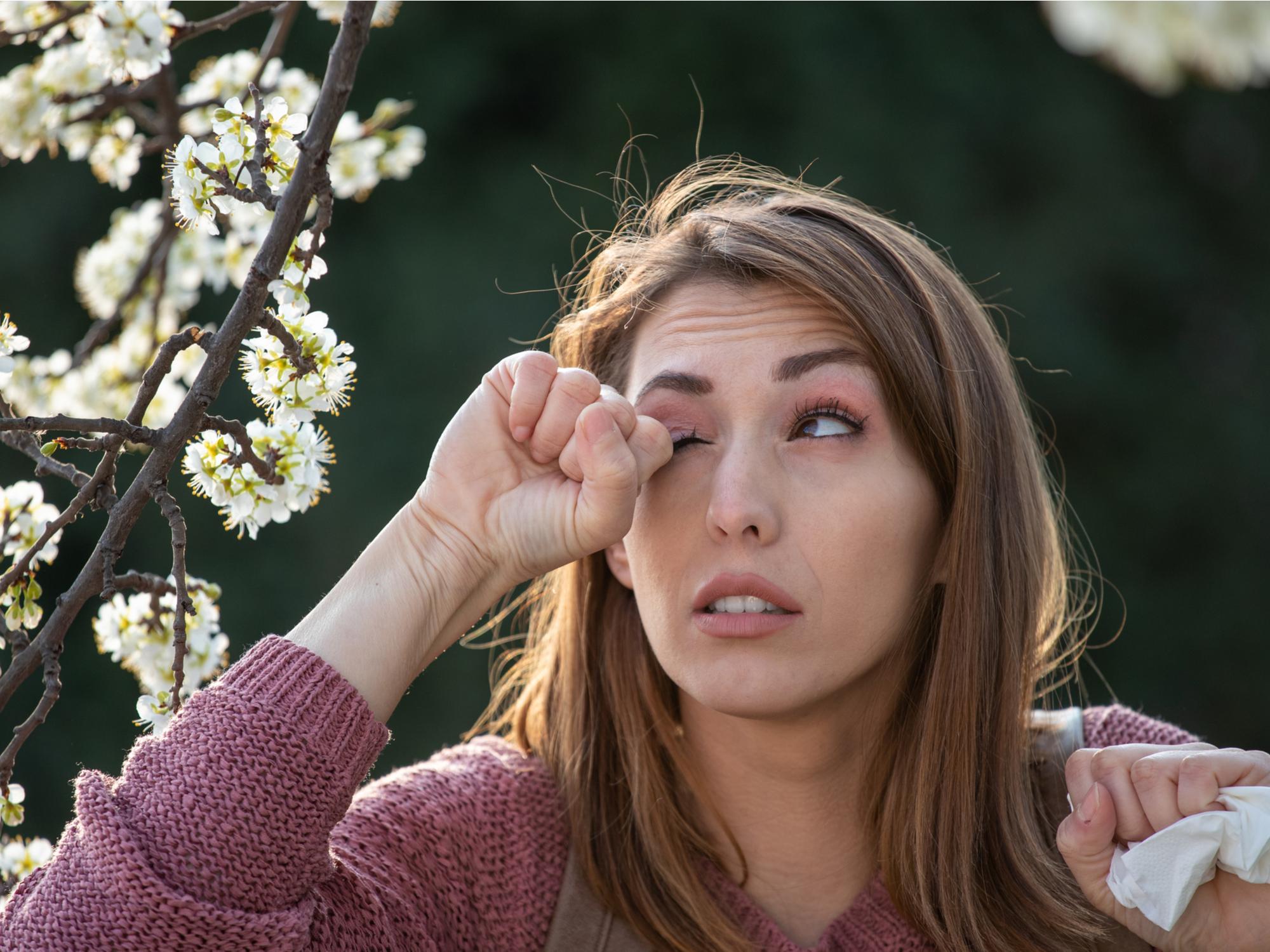 Symptoms of Dry Eyes vs. Seasonal Allergies