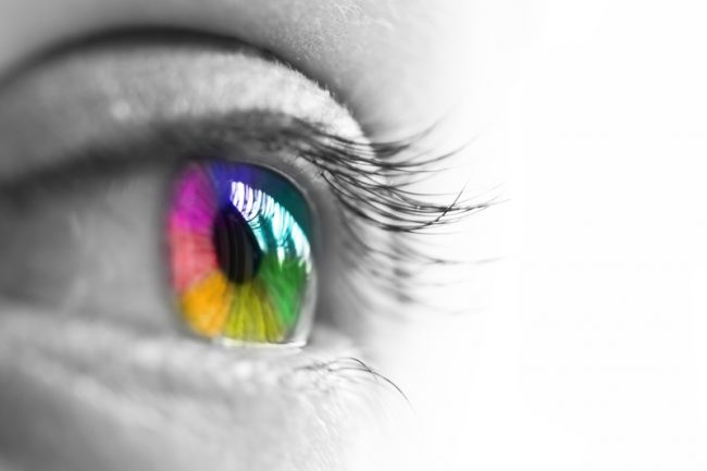 Color Perception: Are You Seeing What I'm Seeing?