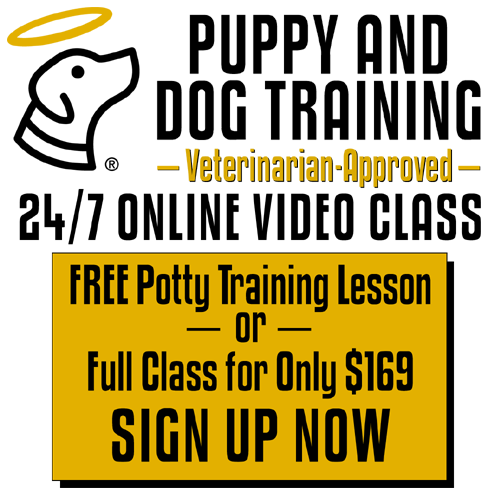 Online training classes!