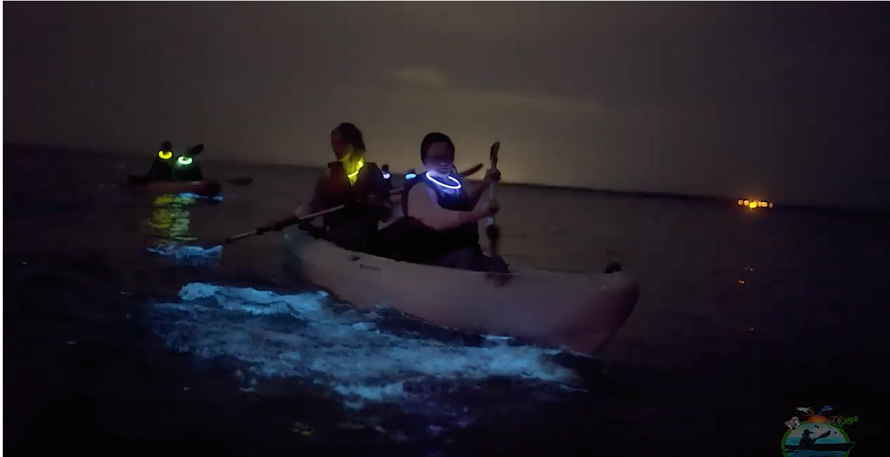 Bioluminescence night kayaking