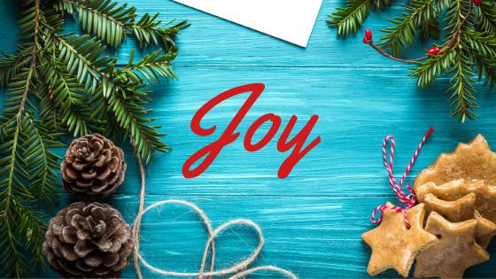 Finding Joy & Minimizing Stress This Holiday Season