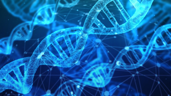 Why Genetics Don't Matter (Much)