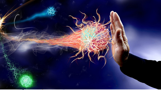 The Strength and Health of Your Immune System