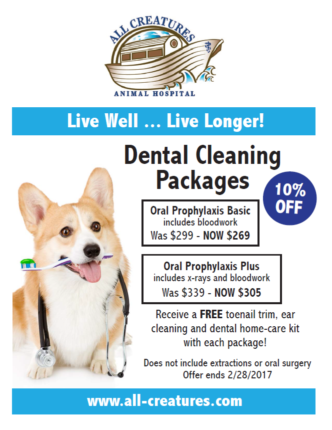10% off Dental Cleaning