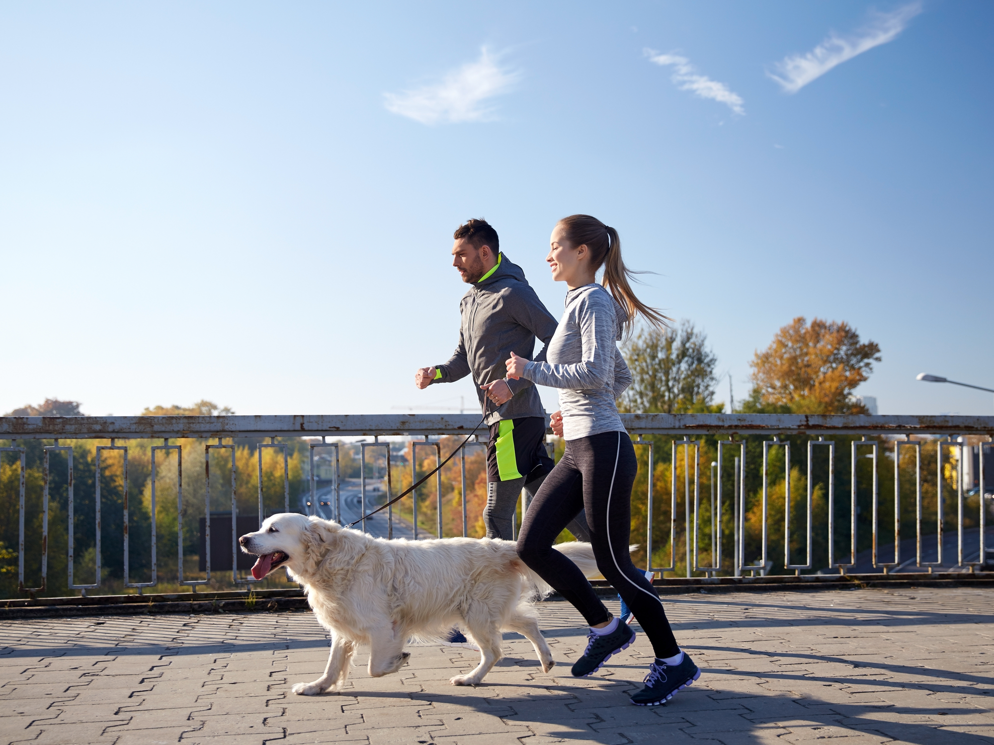 Helpful Tips for Exercising With Your Pets