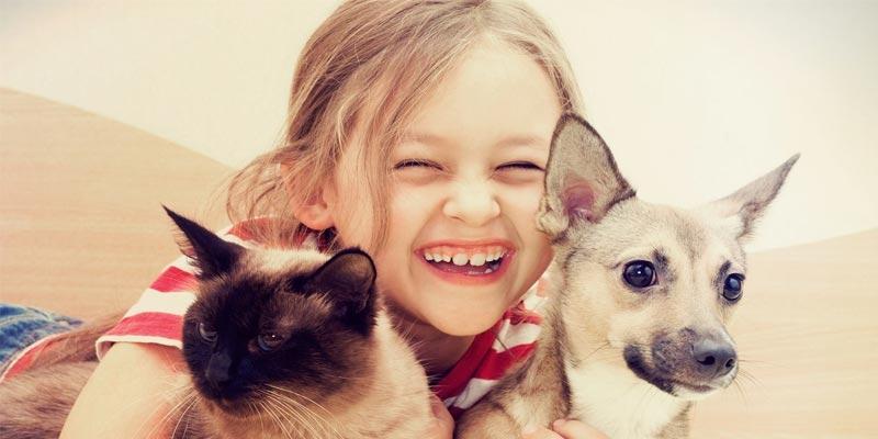 Adobe Animal Hospital - Reviews