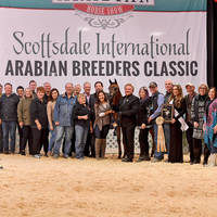 2018 Scottsdale Show Results