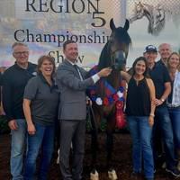 Region 5 Champion Stallion - 2019