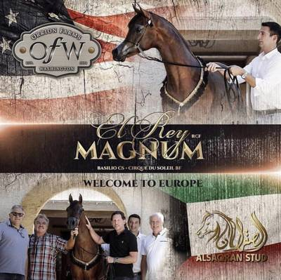 El Rey Magnum - Welcome To Europe