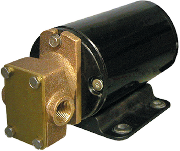 GEAR PUMP FOR OIL AND WATER DISCHARGE (#34-GPB1) - Click Here to See Product Details