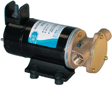REVERSIBLE ROTARY VANE PUMP (#6-186801000) - Click Here to See Product Details