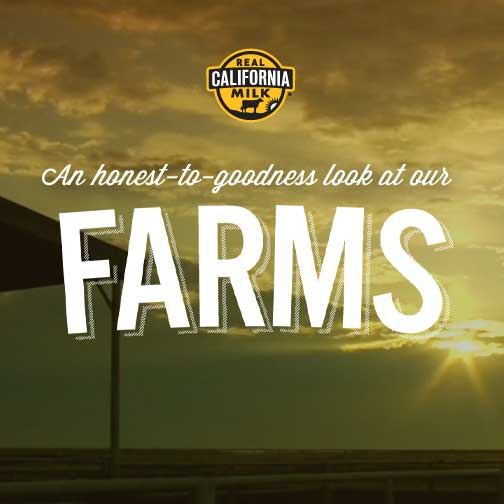 Our Dairy Farms | California Milk | Dairy Products | Dairy Farming
