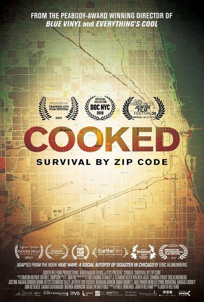 Cooked: Survival by Zip Code movie poster