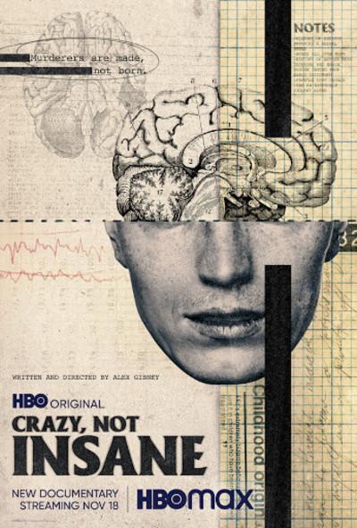 Crazy, Not Insane movie poster