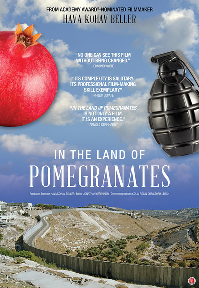 In the Land of Pomegranates movie poster