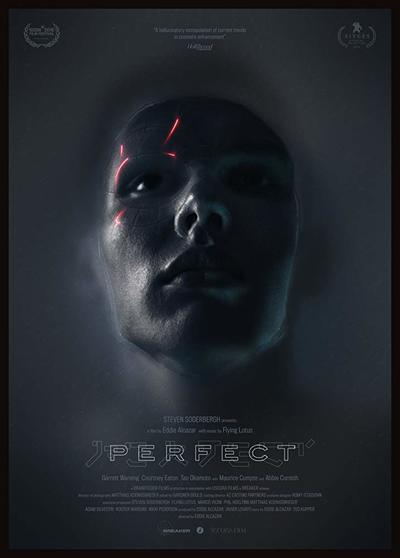 Perfect movie poster