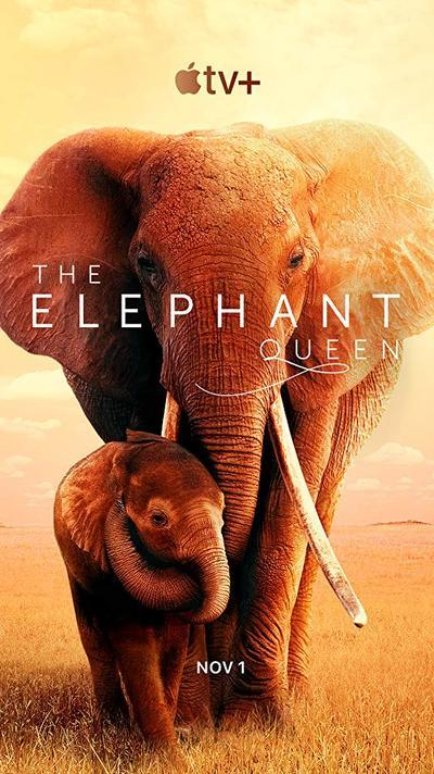 The Elephant Queen movie poster