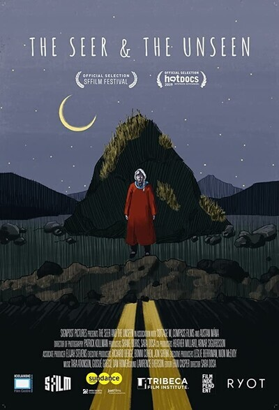 The Seer and the Unseen movie poster