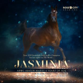 JASMINIA AS WORLD CUP SUPREME GOLD CHAMPION - Rose City Arabians