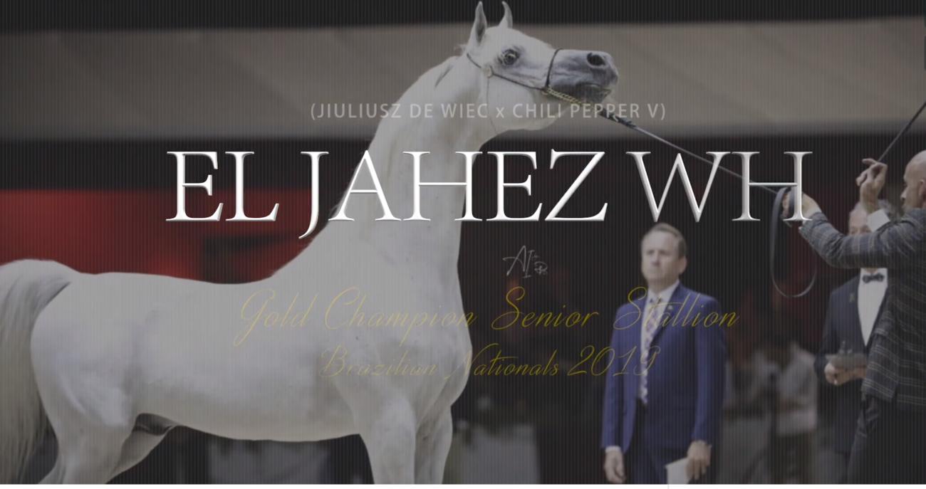 El Jahez WH
