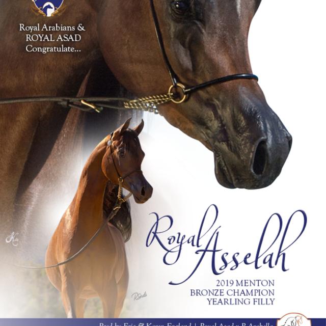 Royal Asad Salutes his Champion Winnning Daughter