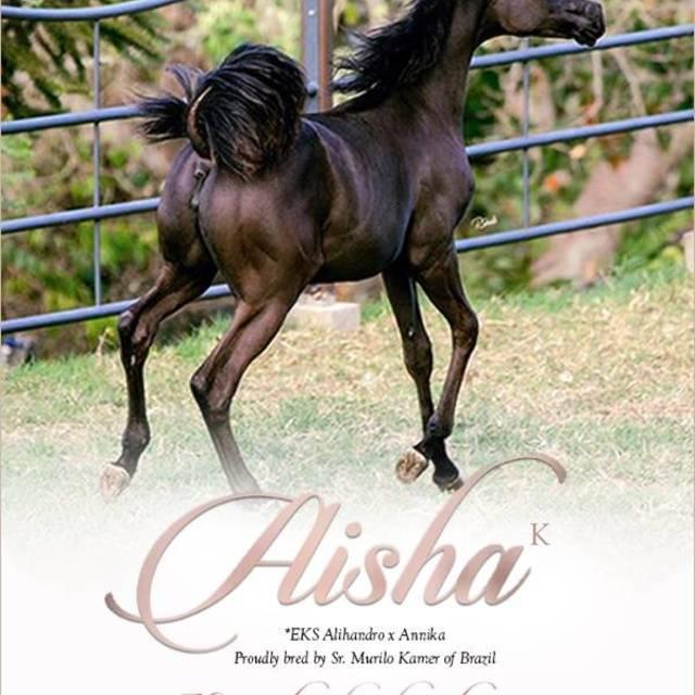 Aisha K, remember the name her story has begun!