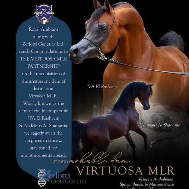 Virtuosa MLR now owned by the Virtuosa MLR Partnership!