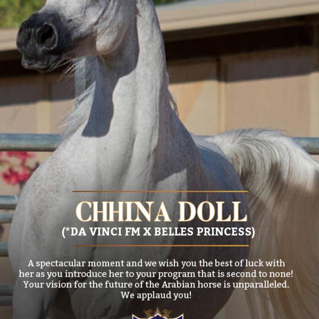 PCF Arabians knows fine Chhina
