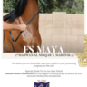 FS Maya in the hands of a breeder that is prepared to create her destiny!