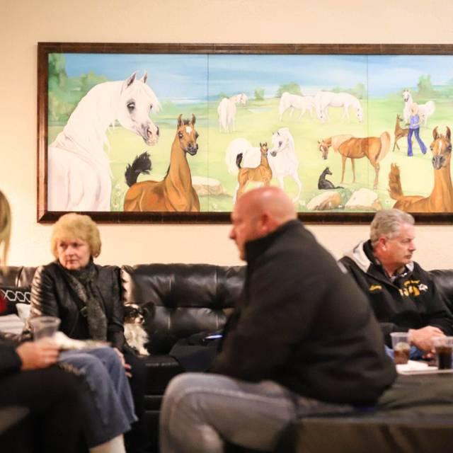 Royal Arabians 2nd Annual Scottsdale Open House February 21st 2018