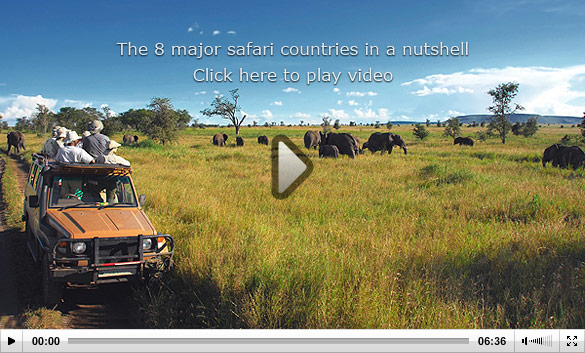 Watch 'The 8 major safari countries in a nutshell'