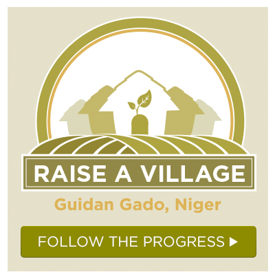 raise a village donation button