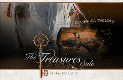 The Treasures Sale
