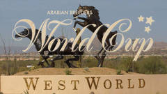 Arabian Breeder's World Cup
