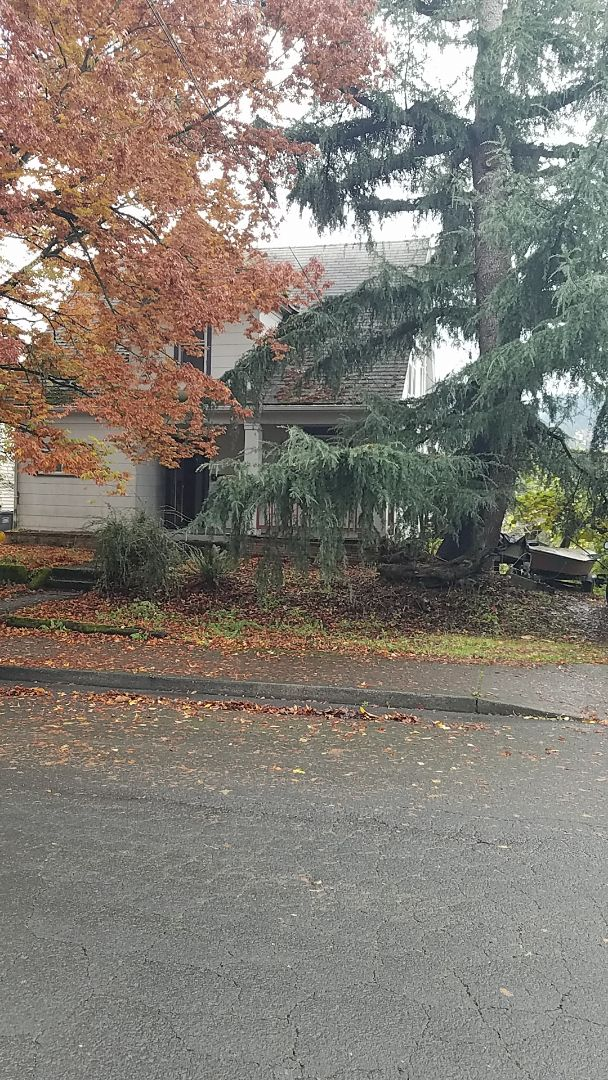 Portland, OR - Free estimate for a GAF Timberline HDZ roof replacement l, 3 layer removal