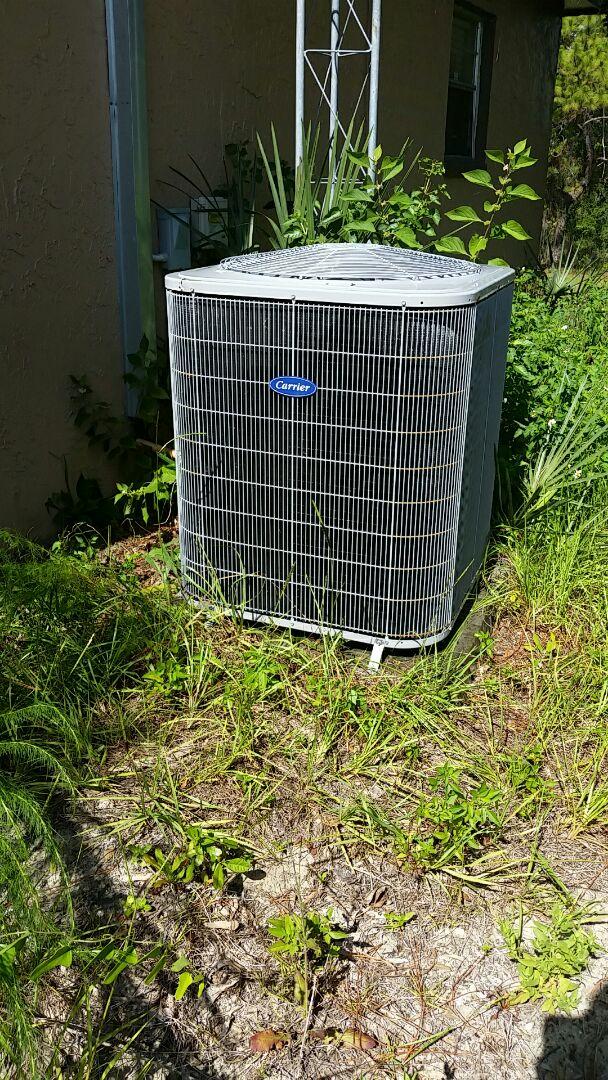 Pomona Park, FL - Heat pump cool mode tune up maintenance on a carrier split system
