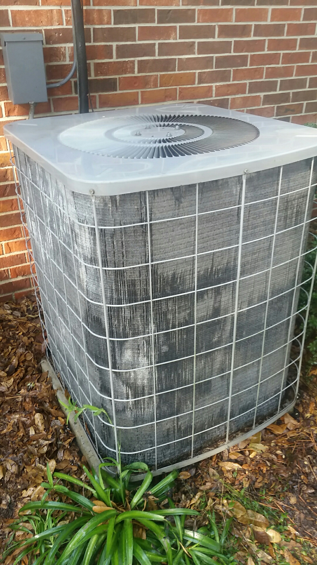 Melrose, FL - Maintenance on Goodman split heat pump system