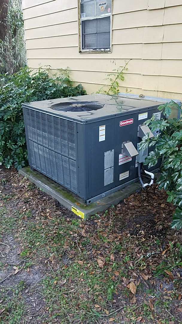 San Mateo, FL - Tune up Goodman gas package unit