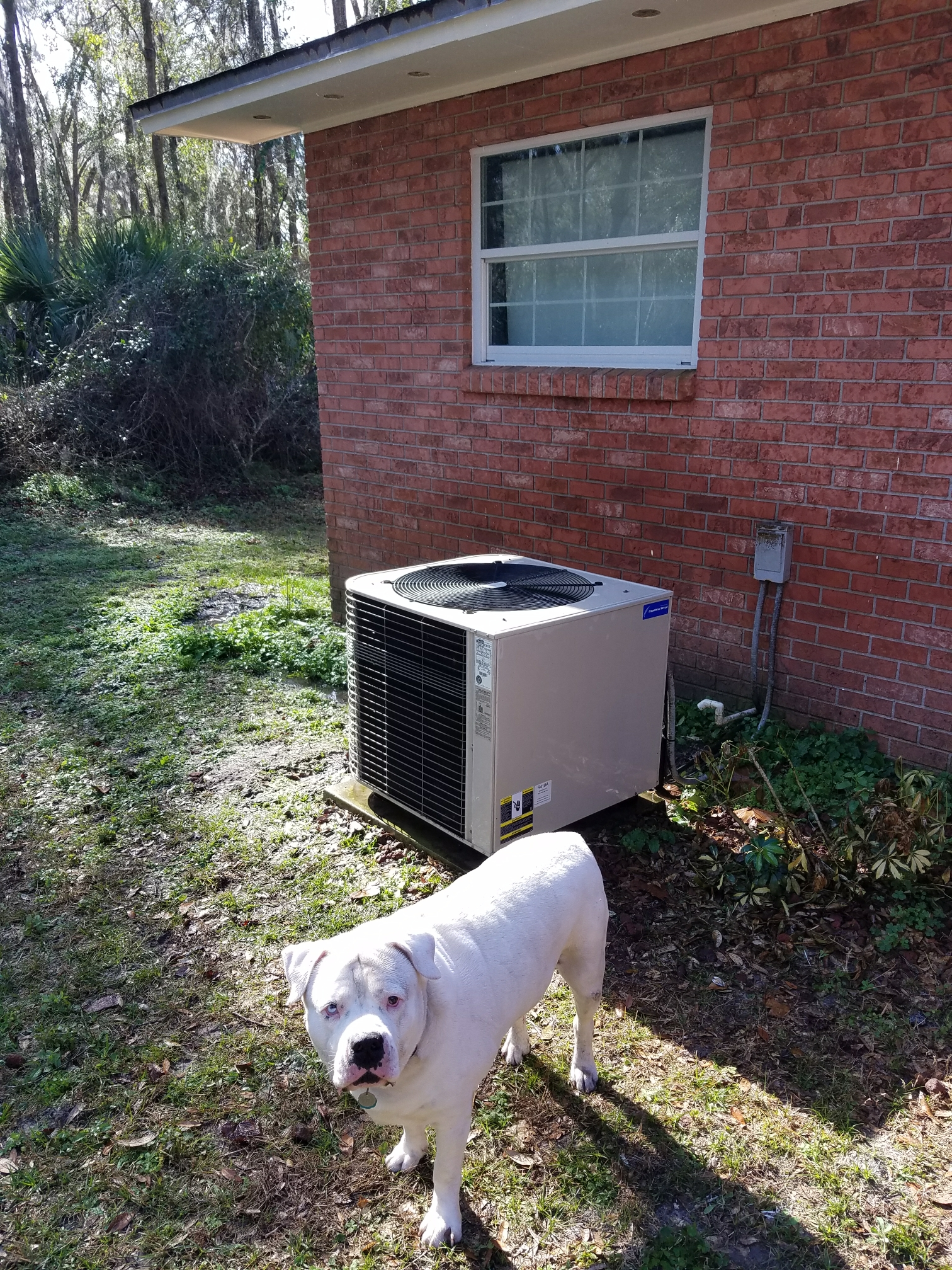 San Mateo, FL - Maintenance on lennox