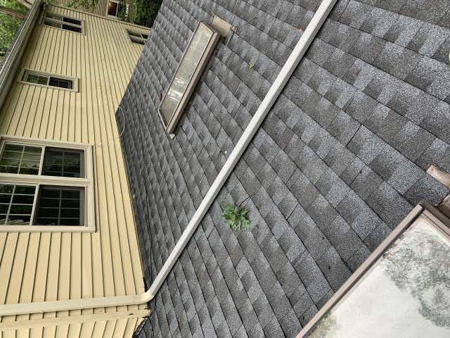 Medford Lakes, NJ - Tree damaged roof, we replaced the existing damaged roof with Timberline HD - Pewter Gray shingles with 50 year GAF manufacturer warranty and 10 year workmanship warranty supplied by Nuss Construction