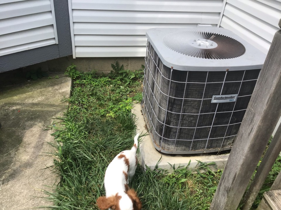 Guy is going to wait on furnace check for November and renew when we come to do furnace check  Ac 2020 American standard 16 seer