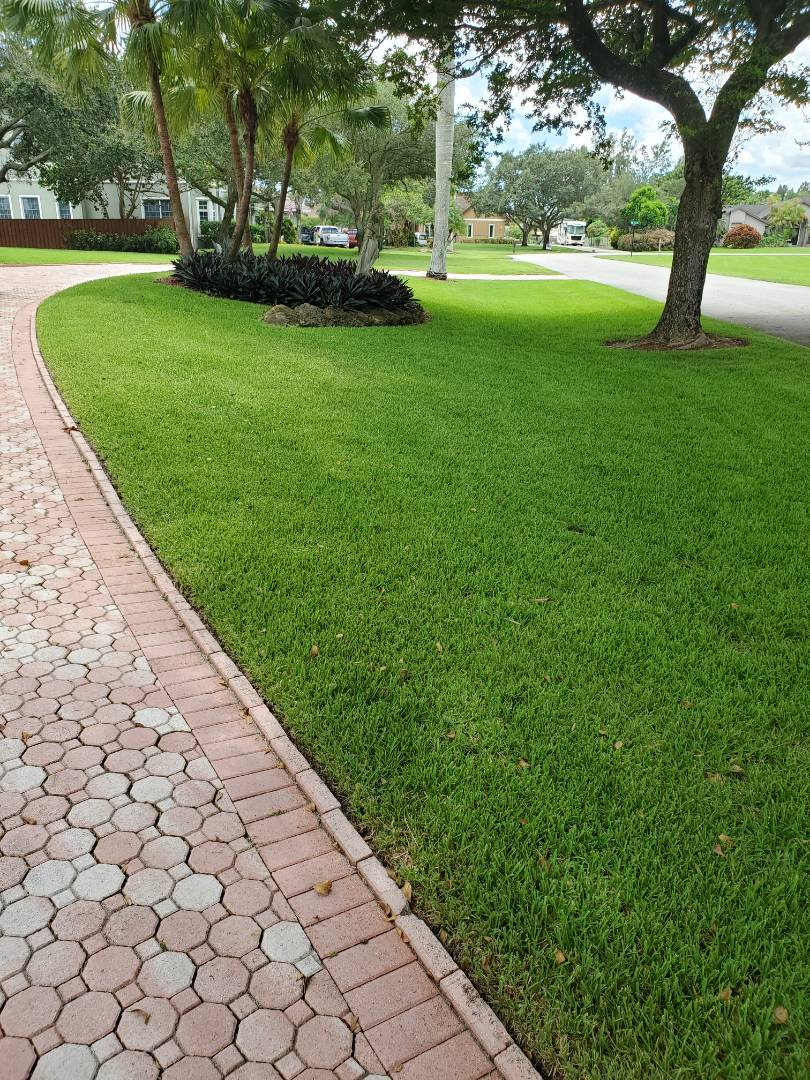 Making the lawn beautiful in Davie