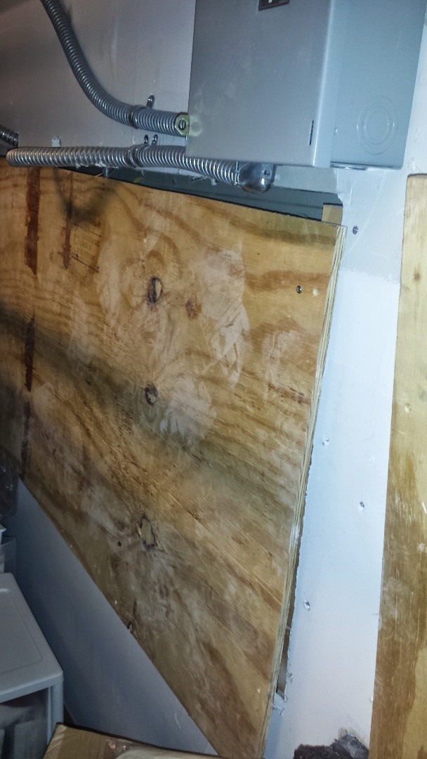 Fort Lauderdale, FL - Termite inspection in Dania Beach 33312