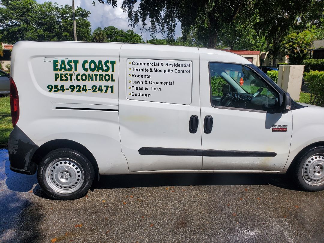 Termite inspection in Tamarac