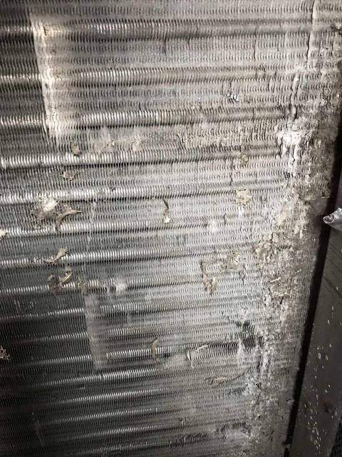 Ventura, CA - Winter maintenance performed by our commercial HVAC tech at a bank in Ventura, California. All belts were inspected, air conditioner filters replaced. Noted that the evaporator coil on the #1 Carrier unit was dirty and would need to be cleaned. Rest of units working normally, quoting deficiency to the customer.