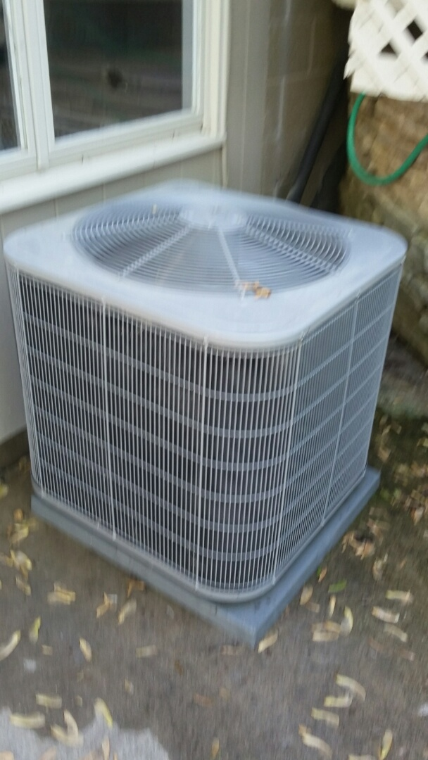 Eden Prairie, MN - just completed a clean and tune on a Carrier air conditioner in Eden Prairie