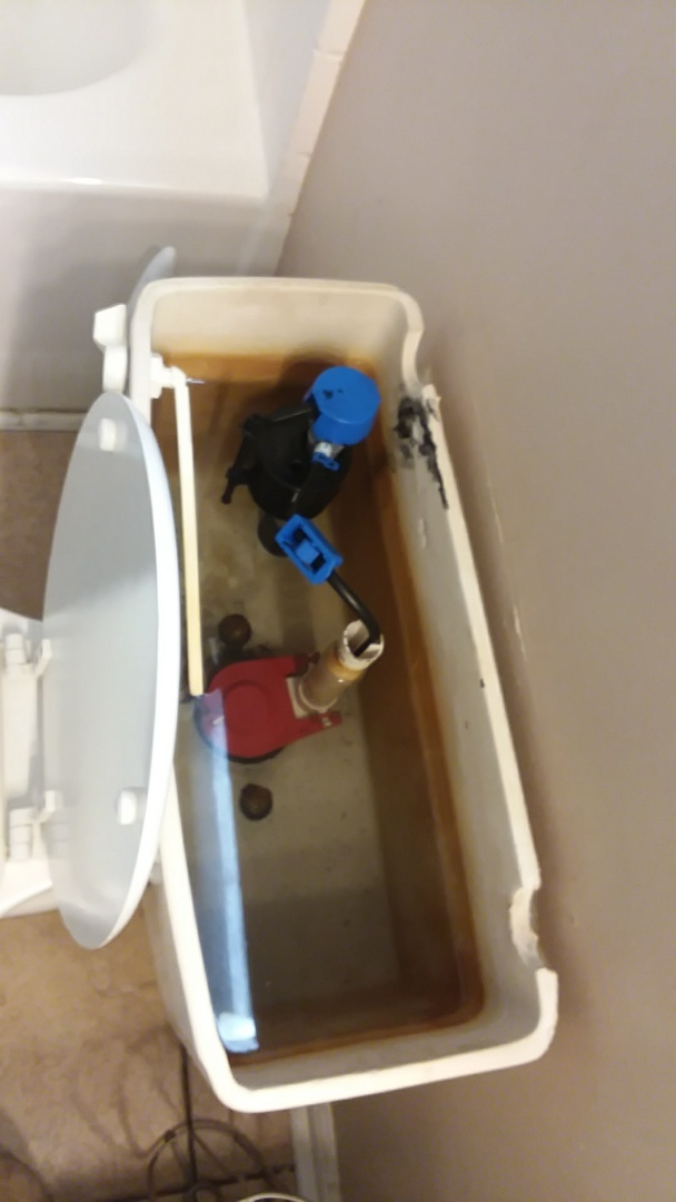Chesapeake, VA - Toilet fill valve failed flooding the ceiling below.I replaced the valve ,supply,and flapper.This toilet is good to go.