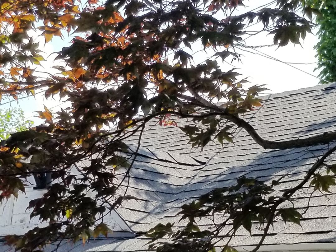 Dearborn, MI - New GAF Timberline HDZ Charcoal roofing system