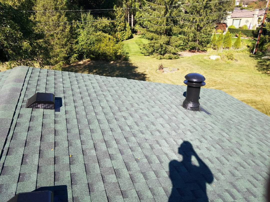 Troy, MI - New GAF Timberline High Definition roofing, (Hunter Green). extra Ice Guard at flashing walls, valleys, three Velux Skylights, and large chimney flashing area. looks right at home overlooking the large backyard.